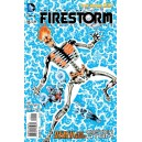 FURY OF FIRESTORM: THE NUCLEAR MEN 15. DC RELAUNCH (NEW 52)