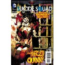 SUICIDE SQUAD 21. DC RELAUNCH (NEW 52).