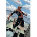 SPIDER-MAN 8. VARIANTE. MARVEL NOW ! NEUF.