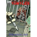TEENAGE MUTANT NINJA TURTLES 9. COVER A. TMNT.