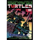 TEENAGE MUTANT NINJA TURTLES COLOR CLASSICS N°1